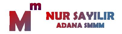 Adana Smmmo Nur Sayılır Mali Müşavir